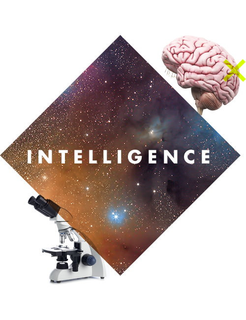 Carousel intelligence